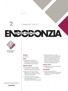 31.2 Cover copia